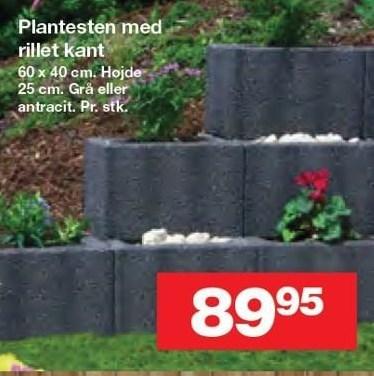 Plantesten med rillet kant
