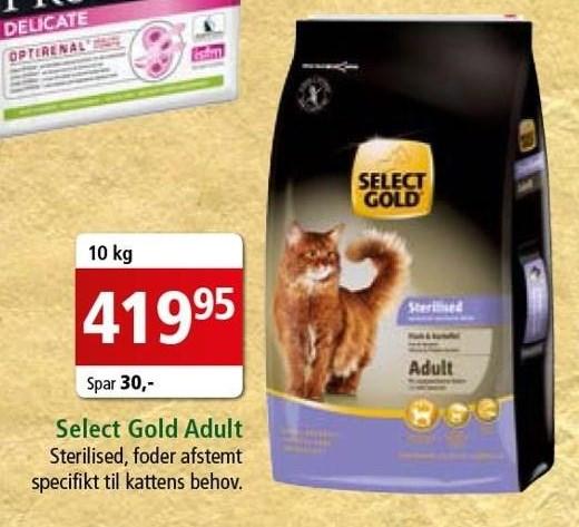 Select Gold adult 10 kg