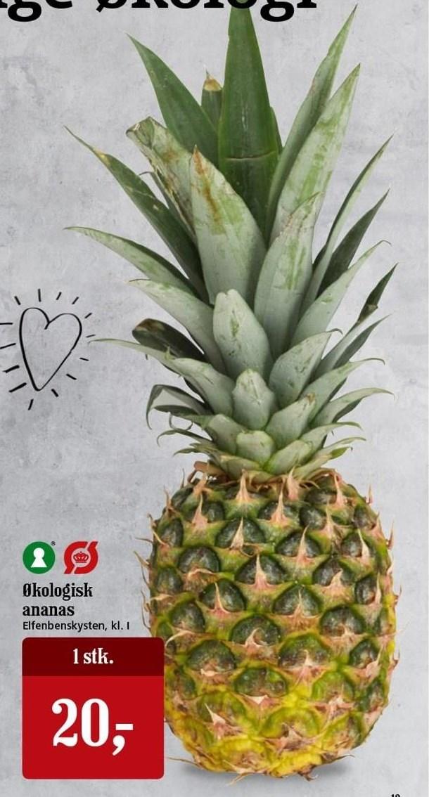 Økologisk ananas