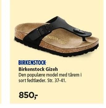 Birkestock Gizeh