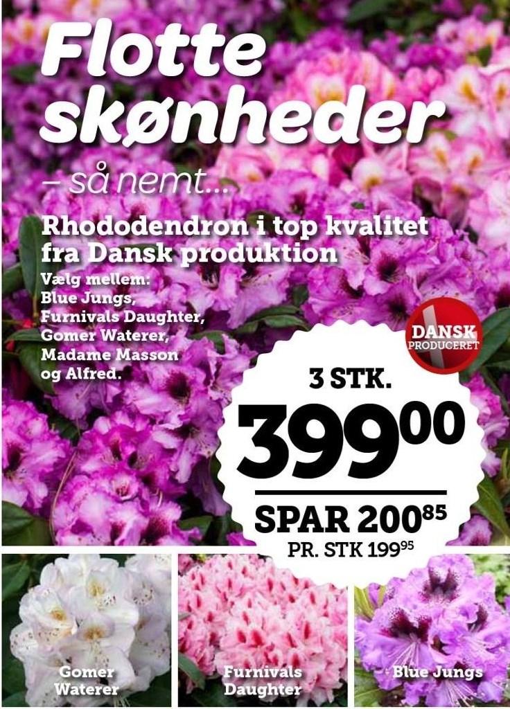 Blomster 3 stk.